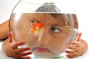 fische mit schwimmproblemen