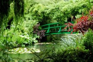 Zubehör für den Gartenteich
