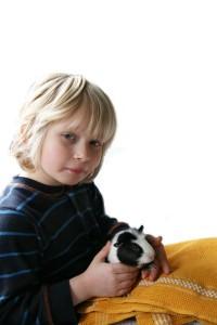 Kind und ein Meerschweinchen