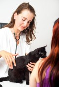eine Katze bei einer Tierärztin